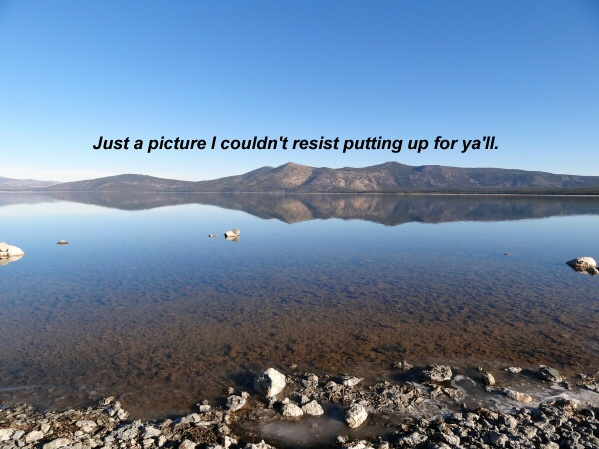 Just couldn_t resist 1-13-12