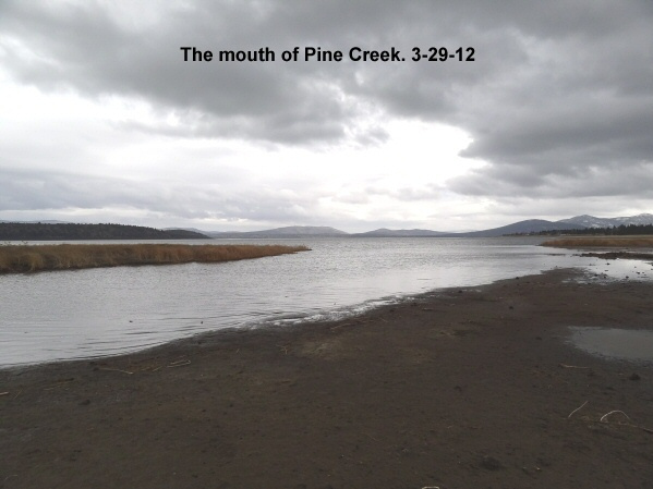 Mouth of Pine Creek 3-29-12