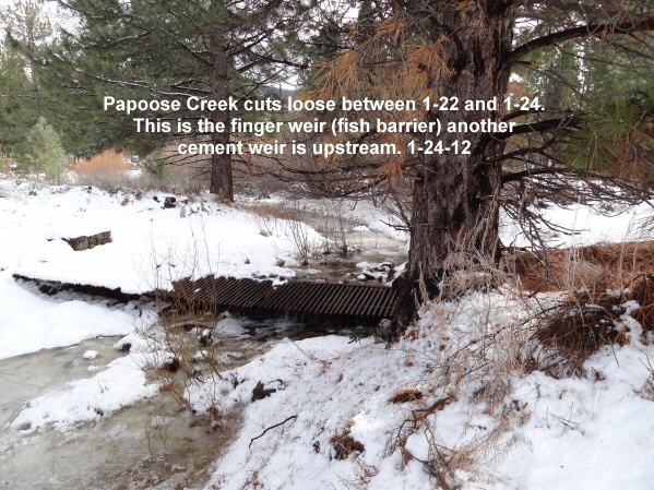 Papoose Creek cuts loose with local drainage 1-24-12