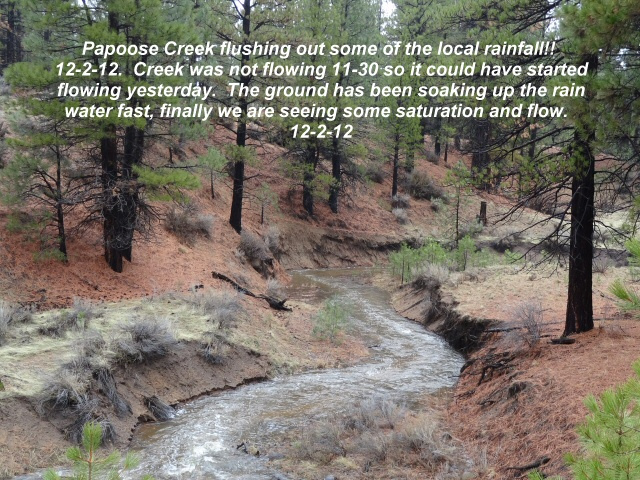 Papoose Creek flushing out local rainfall 12-2-12