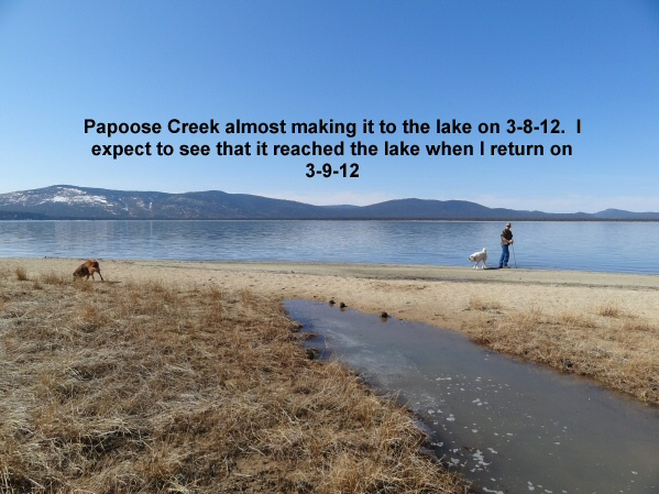 Papoose Creek nears the lake 3-8-12