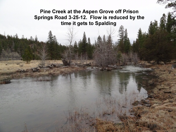 Pine Creek at the Aspen Grove off Prison Springs Road 3-25-12
