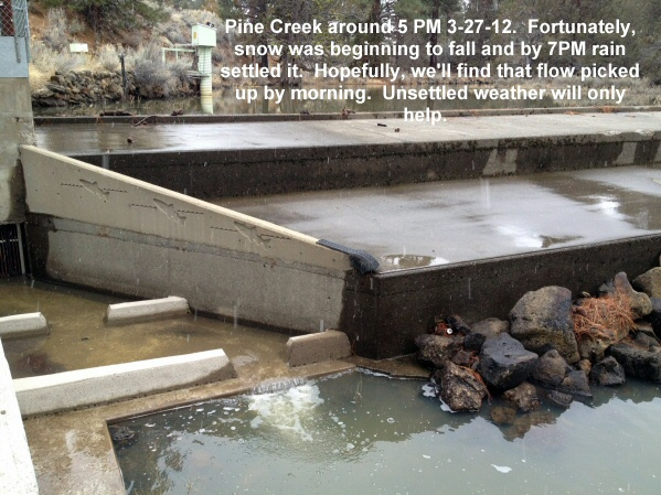 Pine Creek before the storm 3-27-12_001