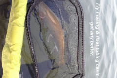 Fly fishing can_t get any better