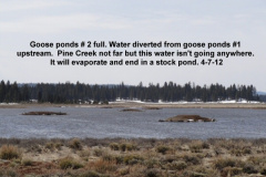 Impounded water never getting to Pine Creek 4-7-12