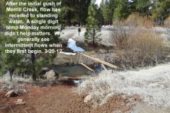 Merrill Creek now standing water 3-20-12