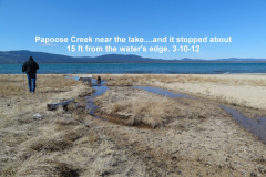 Papoose Creek so close yet so far away 3-10-12