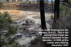 Pine Creek flushing to the estuary 12-3-12
