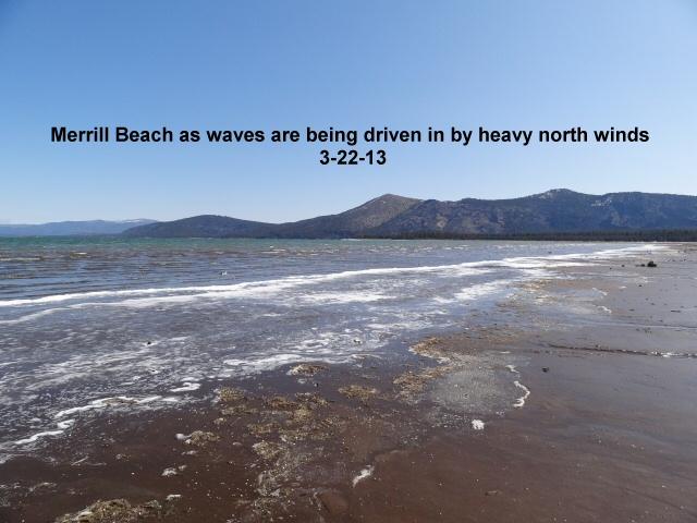 Merrill Beach 3-22-13