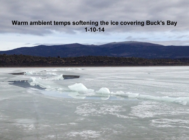 Warm temps softening the ice sheet covering the north basins 1-10-14