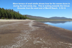 Wind driven wave terrace 3-15-14