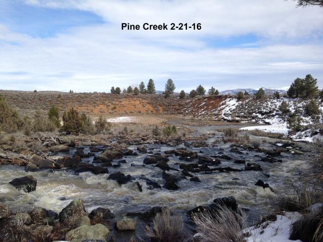 Pine Creek 2-21-16