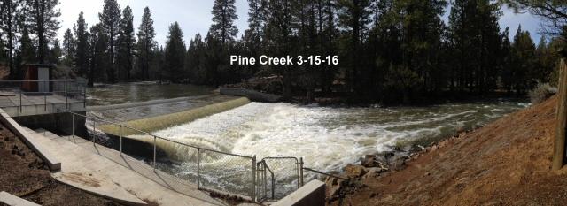 Pine Creek 3-15-16