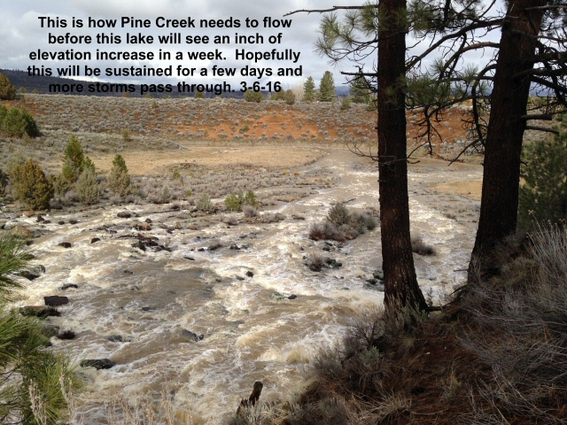 Pine Creek _ 3-6-16