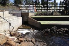 Pine Creek 2 5-19-16