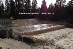 Pine Creek 3-6-16