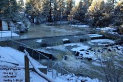 Pine Creek at Spalding 1-30-16