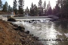 Pine Creek at Spalding 2-13-16