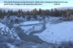 Pine Creek flushing out the last storm 1-30-16