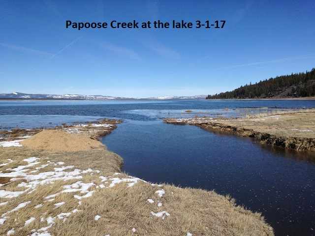 Papoose Creek 3-1-17