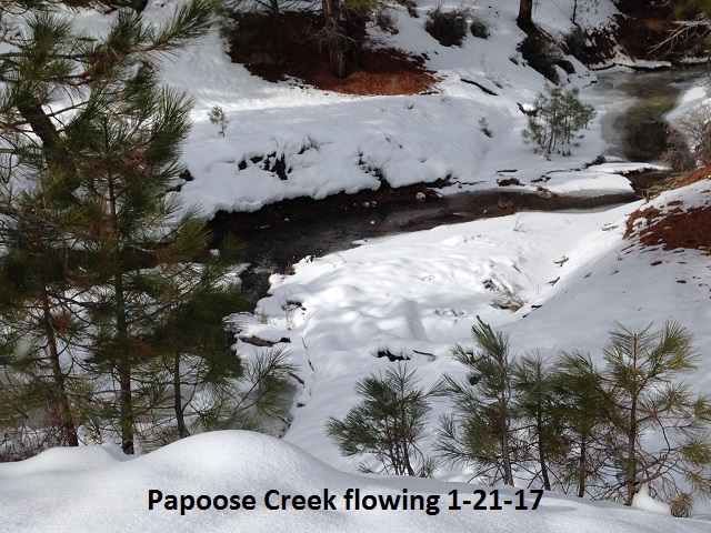 Papoose Creek flowing 1-21-17