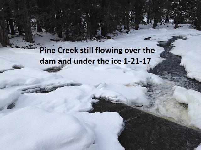 Pine Creek 1-21-17