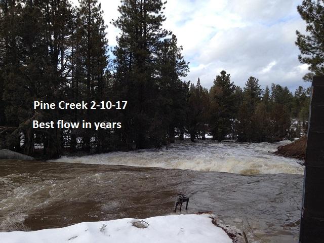 Pine Creek 2-10-17