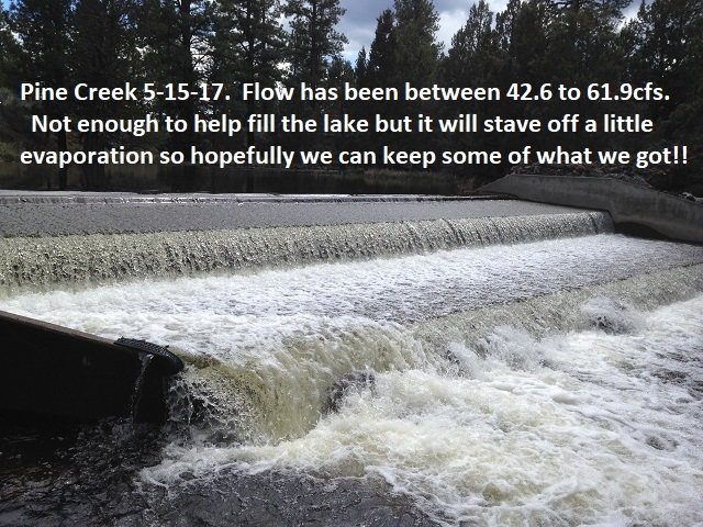 Pine Creek 5-15-17
