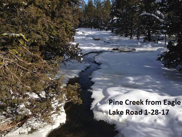 Pine Creek from Eagle Lake Road 1-28-17
