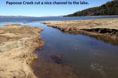 Papoose Creek 2-11-17