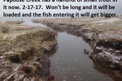 Papoose Creek 2-17-17