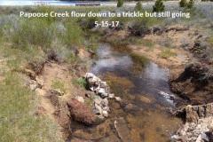 Papoose Creek 5-15-17
