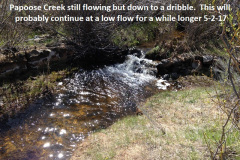 Papoose Creek 5-2-17
