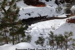 Papoose Creek flowing 1-21-17