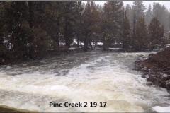 Pine Creek 2-19-17