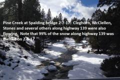 Pine Creek at Spalding bridge 2-7-17