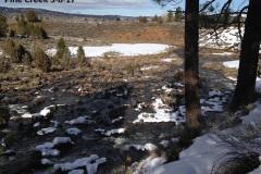 Pine Creek below the dam 3-8-17