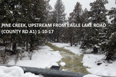 Pine Creek from Eagle Lake Rd 1-10-17