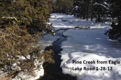 Pine Creek from Eagle Lake Road 1-28-17