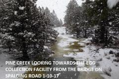 Pine Creek from Spalding Rd Bridge 1-10-17