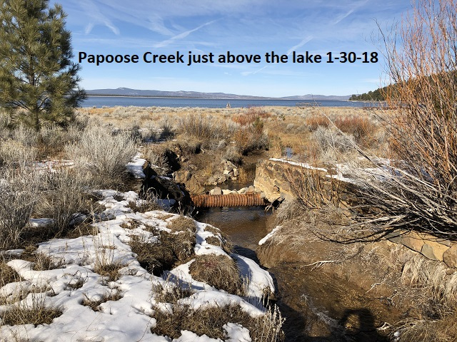 1-30-18-Papoose-Creek-above-the-lake