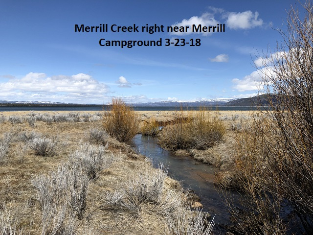 3-23-18 Merrill Creek at Merrill Campground