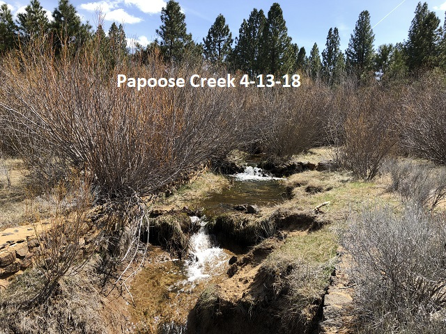 4-13-18 Papoose Creek above the lake