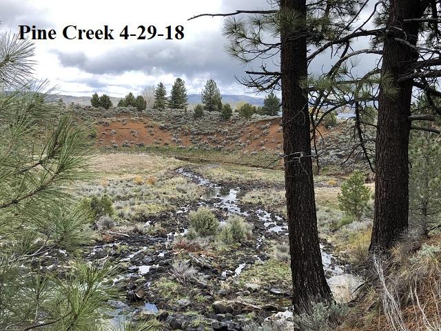 4-29-18 Pine Creek ^^
