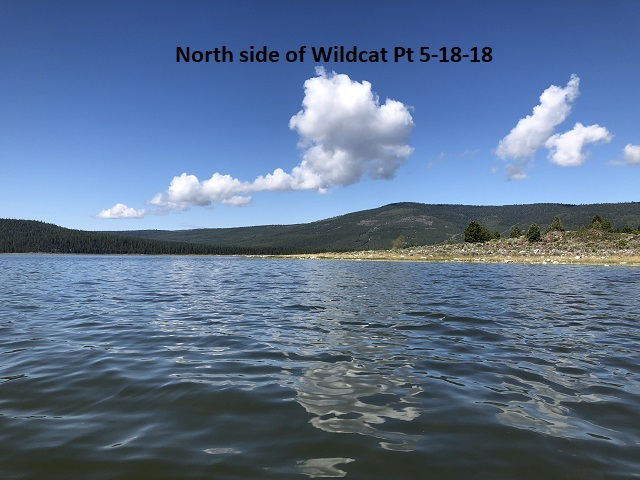 5-18-18 north side of Wildcat Pt
