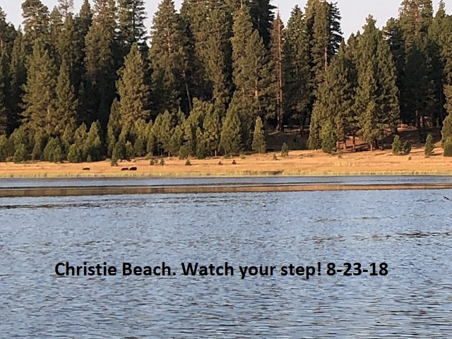 8-23-18 Christie Beach, Watch your step!
