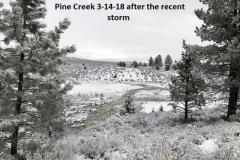 3-14-18 Pine Creek