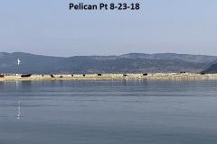 8-23-18 Pelican Pt