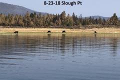 8-23-18 Slough Pt