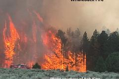 8-9-18 Whaleback Fire 7-31